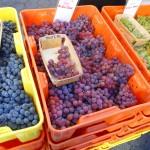 Union Square Greenmarket, Barrington stall
